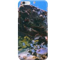 Old Shipwreck and Reef Fish, Bahamas Sea iPhone Case/Skin
