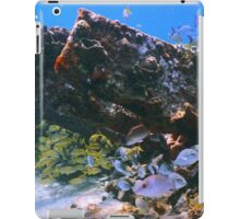 Old Shipwreck and Reef Fish, Bahamas Sea iPad Case/Skin