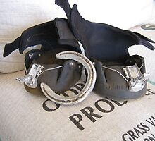 """Horse """"Shoes"""" by Adrian Kent"""