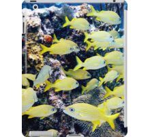 Yellow Caribbean Reef Fish on a Bahamas Reef iPad Case/Skin