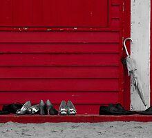 Brighton Wedding by wolfcat