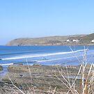 Across the bay by harryland93