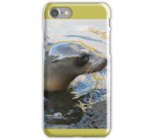 Galapagos Sea Lion iPhone Case/Skin