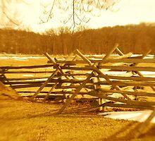 Split rail fence at Gettysburg by Lynn McCann