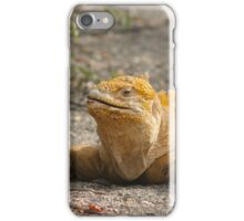 Gorgeous Galapagos Iguana iPhone Case/Skin