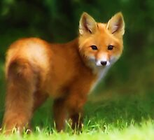 Fiery Fox by Christina Rollo