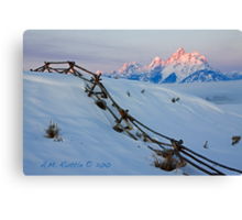 Running Buck & Rail, First Light on the Grand Canvas Print