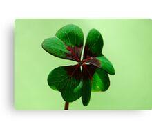 Irish Luck Canvas Print