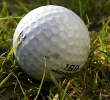Golf Ball by rhian mountjoy