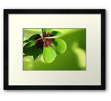Shamrock Heart Framed Print