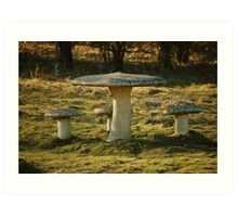 Toadstool Chairs & Table Art Print
