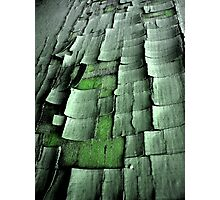 Cracked Green Photographic Print