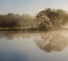 Beautiful Misty River Sunrise Landscape by Christina Rollo