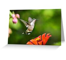 Shimmering Breeze Greeting Card