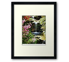 A Splash Of Colour and Water Framed Print