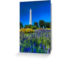 The Washington Monument in Spring Greeting Card
