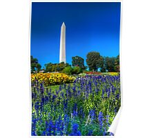 The Washington Monument in Spring Poster