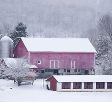 Red Barn in Snow by Michael  Dreese