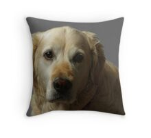 Gemma, our Golden Retriever Throw Pillow