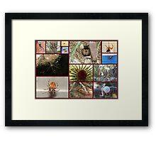 Arachnaphobia ~ Fear of Spiders Framed Print