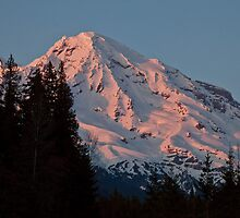 Mt. Rainier at Sunset by Barb White