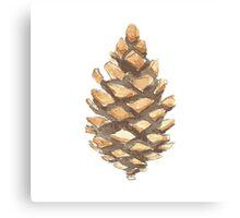 Pine Cone Canvas Print