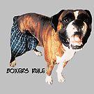 Boxers Rule by Darlene Lankford Honeycutt