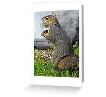 Rabid Squirrel or Stuffing Stealer? Greeting Card
