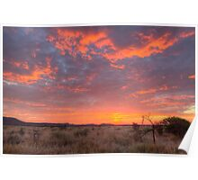 Red sky at night a safari delight Poster