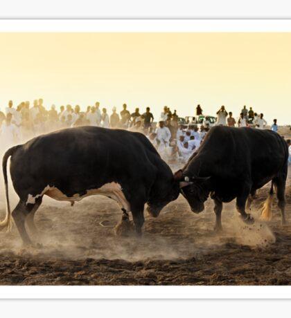 Bullfight Sticker