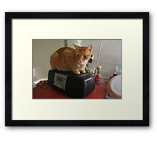 Look who's on the radio!!! Framed Print