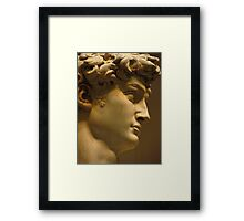 Michelangelo Study; The Face Framed Print