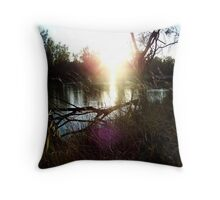 Murray River Throw Pillow