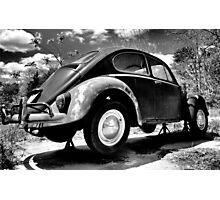 Rusty Beetle Photographic Print