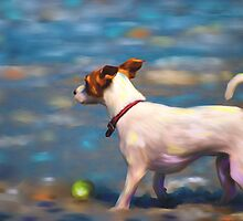 Jack at the Beach by Michelle Wrighton