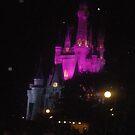 Night in Walt Disney World by Margybear