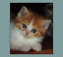 Curious Kitten by vangoing