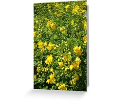 Averille's Yellow Things Greeting Card