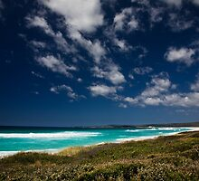 Beach View, Bay of Fires by morealtitude