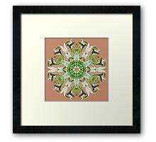 Hummingbird Kaleidoscope  Framed Print