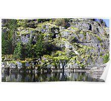 """Lakeside Moss Just Rocks"" Poster"