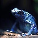 Feeling Blue Today! by Dennis Stewart