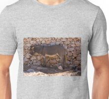 Donkey in the Shade Unisex T-Shirt
