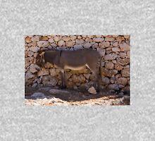 Donkey in the Shade Unisex T-Shirt