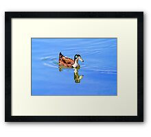 Duck Reflected Framed Print