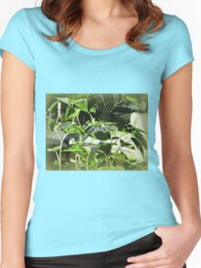 Zen 1 tranquility Women's Fitted Scoop T-Shirt