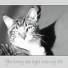 You bring the light into my life by Nina Toulmin