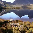 reflection of Cradle Mt in Dove Lake by gaylene