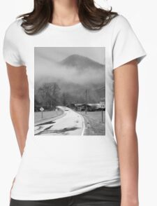 Winter Gray ... ... for joy Womens Fitted T-Shirt