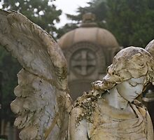 Angel - Milan by Andy Anderson